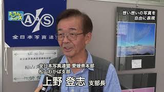 【4K】たうんニュース2018年9月「全日本写真連盟 松山支部・松山わかば支部 合同写真展」 thumbnail