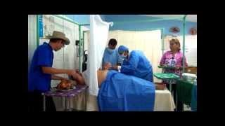 LOS ALEGRES PARRANDEROS, POR BOBO 0416 4759747, MUSICA CAMPESINA DE VENEZUELA