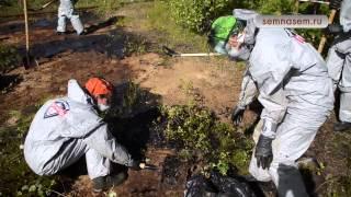 Ликвидация нефтяного пятна Коми(, 2014-08-12T14:21:56.000Z)