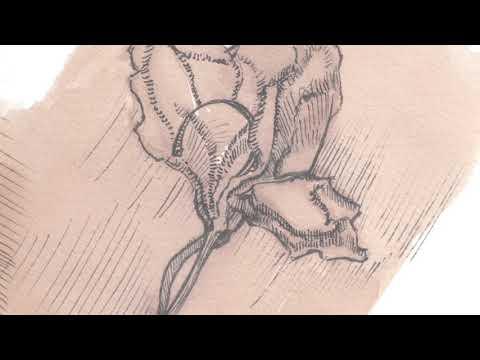 Gretell Barreiro - QUE NADIE SEPA QUE ESTAS AQUÍ - Album SOY (Album)