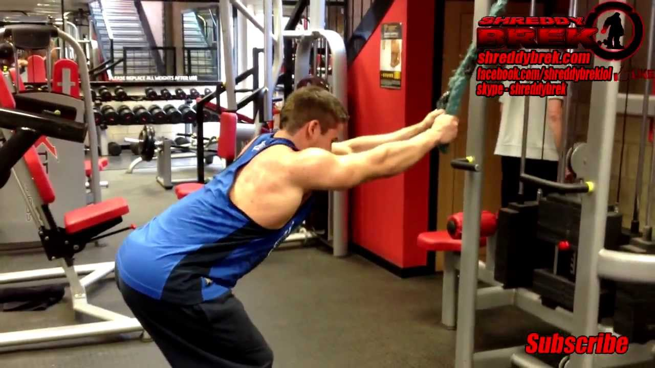 The Best Back Exercises To Build Muscle forecast