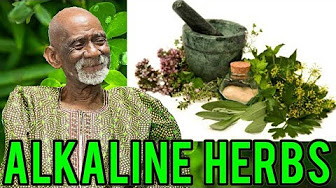 Dr Sebi - YouTube