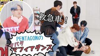 【日本語字幕】キノが終始赤ちゃん化するマフィアダンス①【PENTAGON】
