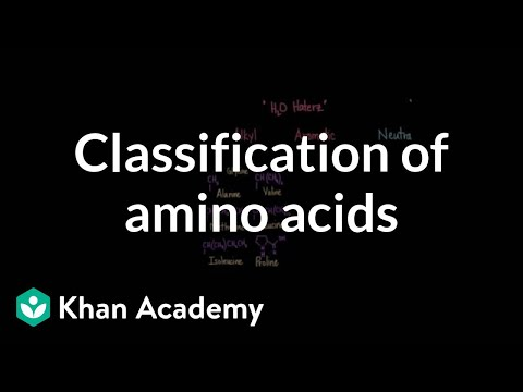 Classification of amino acids   Chemical processes   MCAT   Khan Academy