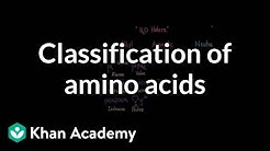 Classification of amino acids | Chemical processes | MCAT | Khan Academy