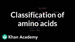 Classification of amino acids | Chemical processes | MCAT | Khan Academy thumbnail