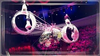 Золотой цирк Никулина - Шоу воды, огня и света. Омский цирк.
