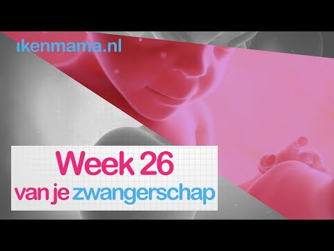 26 Weken Zwanger Zwangerschap Week 26 Ikenmama Nl