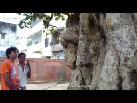 Krishna And Kaliya Naag Place, Real Story (Kaliya Ghat) Vrindavan