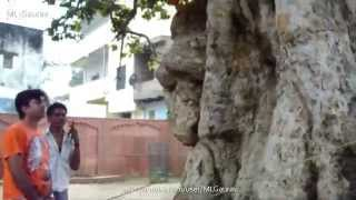 krishna and kaliya naag place real story kaliya ghat vrindavan