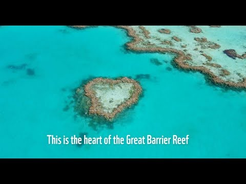 An Inconvenient Sequel | WWF Heart Of The Reef