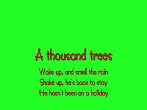 A Thousand Trees - Stereophonics Lyrics