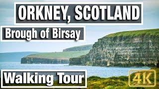 4K City Walks: Orkney Island - Brough of Birsay Coastal Walk - Virtual Walk Walking Treadmill Video