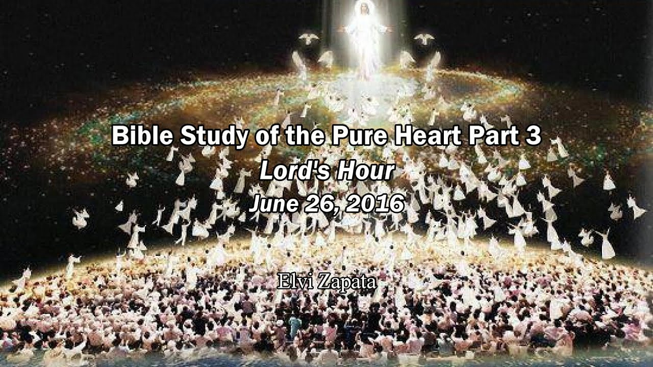 bible study of the pure heart part 3 elvi zapata youtube
