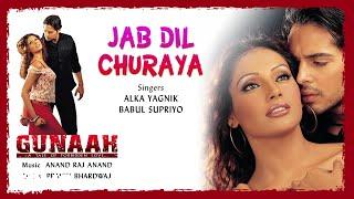 Jab Dil Churaya - Official Audio Song | Gunaah | Anand Raj Anand