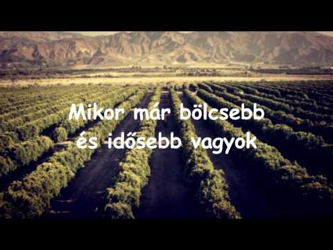 Avicii - Wake Me Up! (magyar)