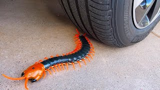 EXPERIMENT: Car vs Centipede, Coca Cola, Balloons   Crushing Crunchy & Soft Things by Car!