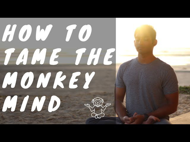 How To Tame the Monkey Mind | Dhyanse