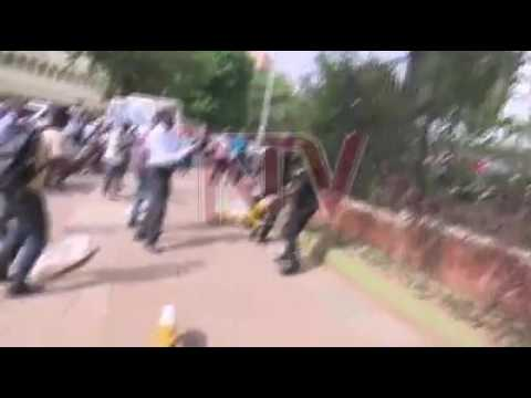 Uganda Jobless Youth  Pigs being kicked by Uganda Police - copyright NTV