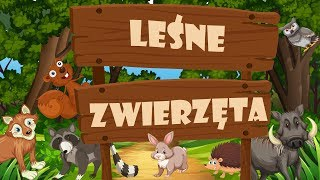 Animals in the Forest - Animal Sounds - Animals for children in Polish