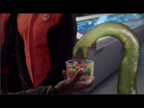 Download The Orville - It just looks really good... S01E11