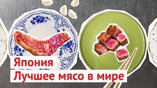 Самое дорогое в мире мясо: японская мраморная говядина