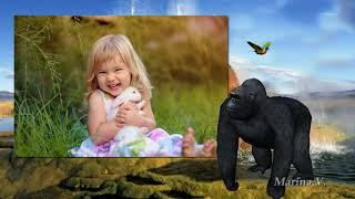 В мире животных | Animal world | Free project ProShow Producer