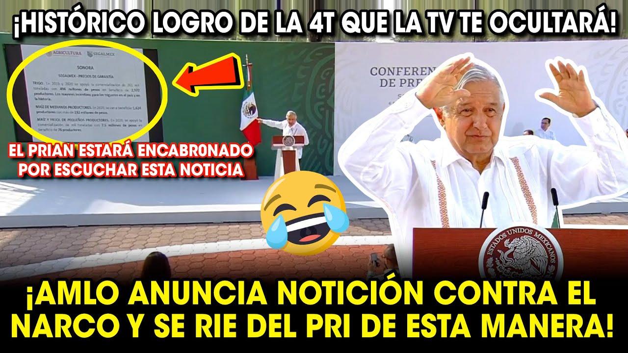 AMLO ANUNCIA NOTIClON CONTRA EL NARC0 Y ASÍ SE RIÓ DEL PRIAN ¡GRAN LOGRO DE LA 4T!