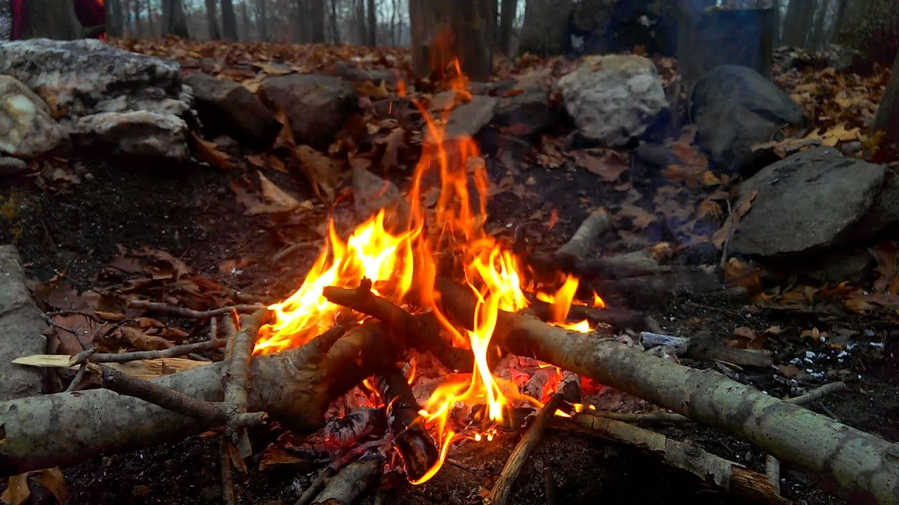 A campfire in the woods  YouTube