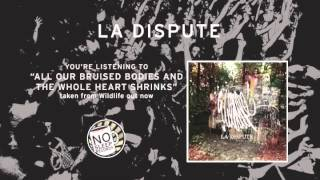 """""""all our bruised bodies and the whole heart shrinks"""" by La Dispute taken from Wildlife"""