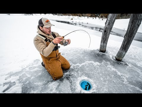 SURPRISING Catch While Ice Fishing MY NEW POND!!! (CATCH CLEAN COOK)