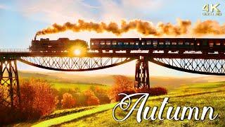 Peak Fall Foliage  Autumn in New England, Europe, Canada and U.S. Colorful Autumn Foliage 4K Drone