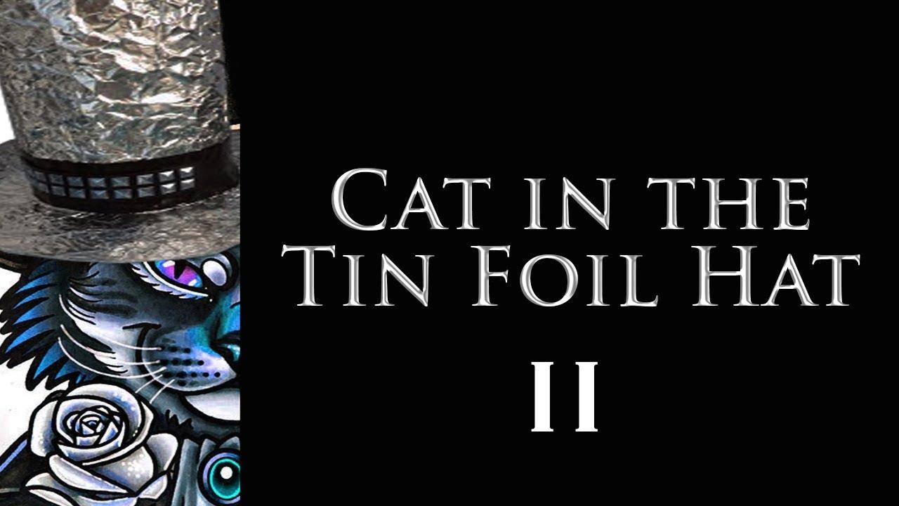 Cat In A Tin Foil Hat
