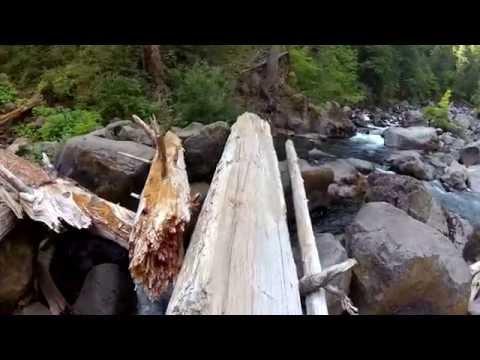 Lets go: Mill Creek Falls Adventure (no talking ASMR 3D audio) Forest trail walk, waterfall, river