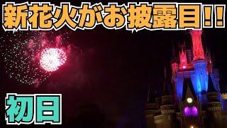 【初日のレア映像】ディズニー・ライト・ザ・ナイト【キャッスル前】 thumbnail