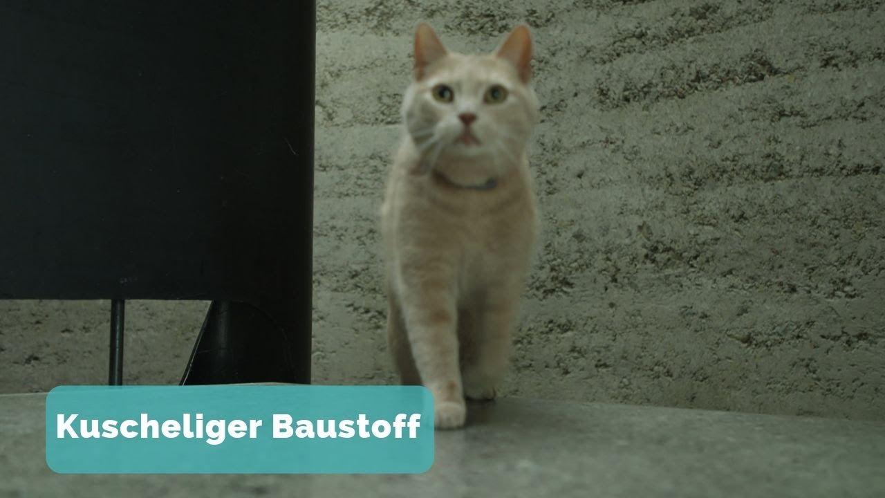BAUEN & WOHNEN: Haus aus Lehm – Alter Baustoff, neu entdeckt - YouTube