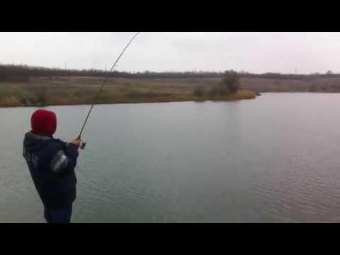 твоя рыбалка полтава