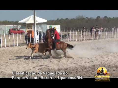 CLASSIFICAÇÃO DA VAQUEJADA DO PARQUE VICENTE BEZERRA UPANEMA RN 2016