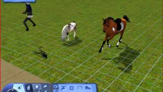 Sims 3: How to deal with Pose Player. [ GERMAN! ]