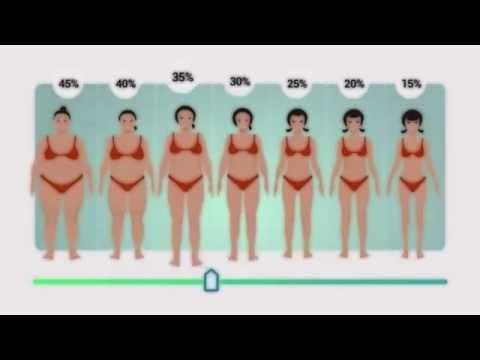 Про толстых и худых