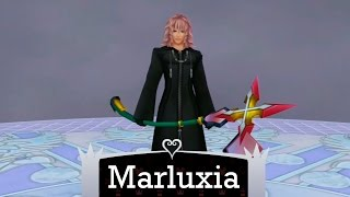 KH 2.5 HD ReMix - Level 1 Data Marluxia (no damage/with restrictions)