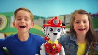 zoomer marshall rolls into the zoomer family tv commercial