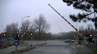 Video Spoorwegovergang Uithuizen // Dutch railroad crossing download MP3, 3GP, MP4, WEBM, AVI, FLV April 2018