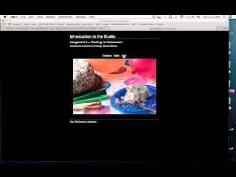 Don Werthman, Professional Digital Media Arts