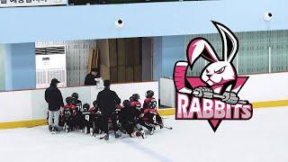 고양이글스 vs 래빗츠 유소년 아이스하키 친선경기 5월…