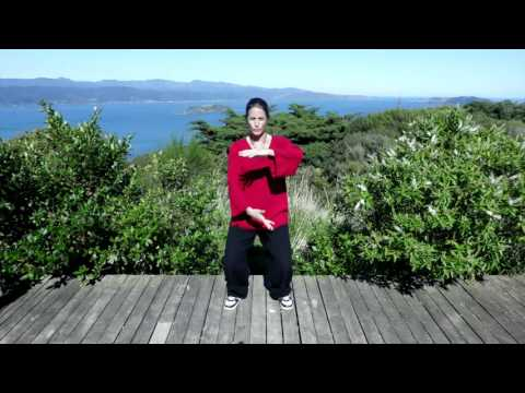 Tai chi 5 Minutes a Day Module 03 - Easy For Beginners