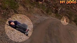 A Woman Laid Down On The Road In Front Of A Dog. The Reason Will Leave You In Tears!