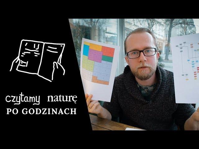 Czytamy naturę po godzinach | Jak duża jest nauka i która nauka jest najważniejsza?