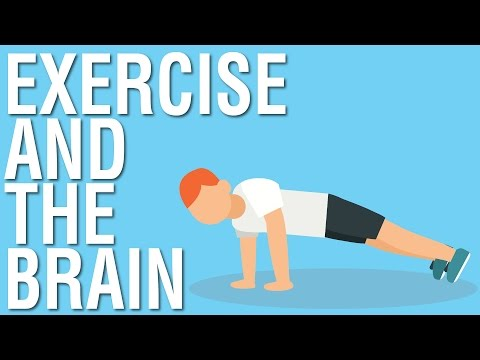 EXERCISE AND THE BRAIN - SPARK BY JOHN RATEY ANIMATED BOOK SUMMARY