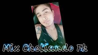 Mix - - Cheliando !! 2k21 !! Dj Fk
